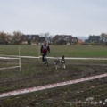 Royal Canin mid a sprint Stochov